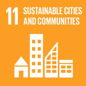SDG 11 Sustainable Cities